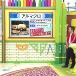 【動画/実況】NMBとまなぶくん 20190802
