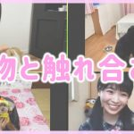 NMB48の難波自宅警備隊 #26